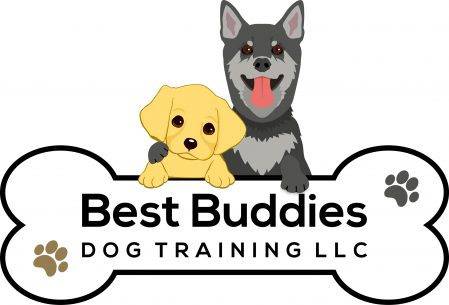 Best Buddies Dog Training