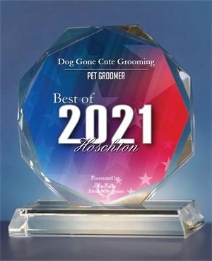 2021 Award